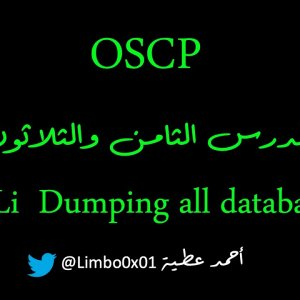 38 SQL injection Dumping all database - OSCP | Offensive Security Certified Professional